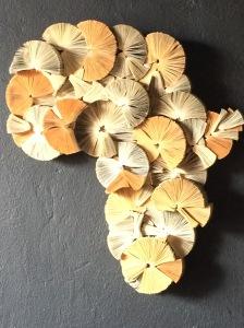 book africa